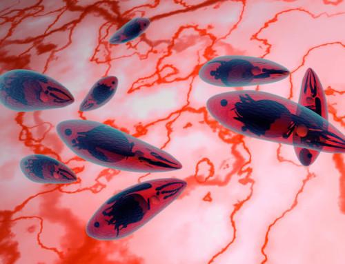 Nuevos peligros  biológicos y químicos establecidos por AECOSAN