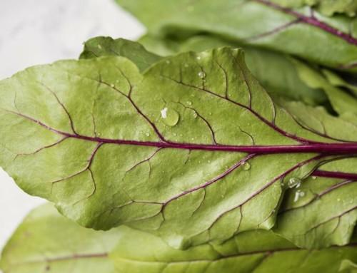 La AESAN actualiza sus recomendaciones de consumo infantil de hortalizas debido a los nitratos
