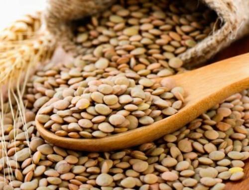 La AESAN publica una nota informativa sobre la presencia de gluten en lentejas