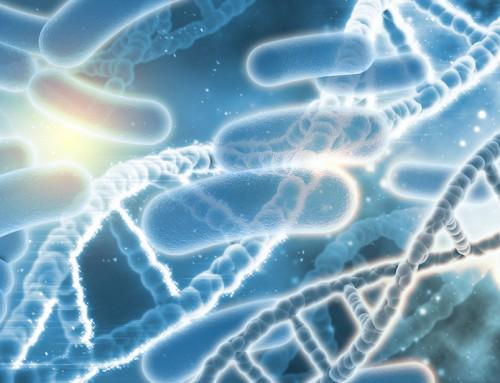 Listeria monocytogenes y su tolerancia a los desinfectantes