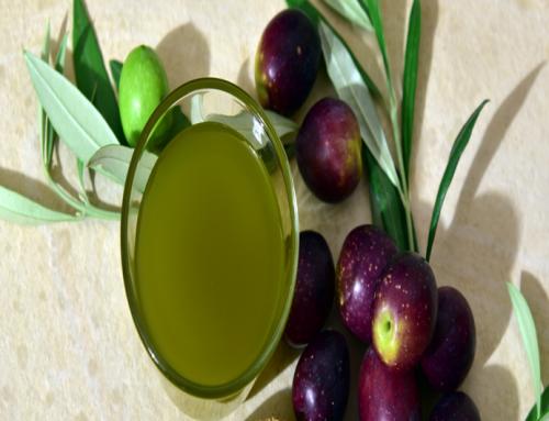 El Gobierno aprueba la norma de calidad del aceite de oliva